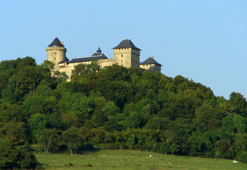 Photo du Château de Malbrouck - Manderen