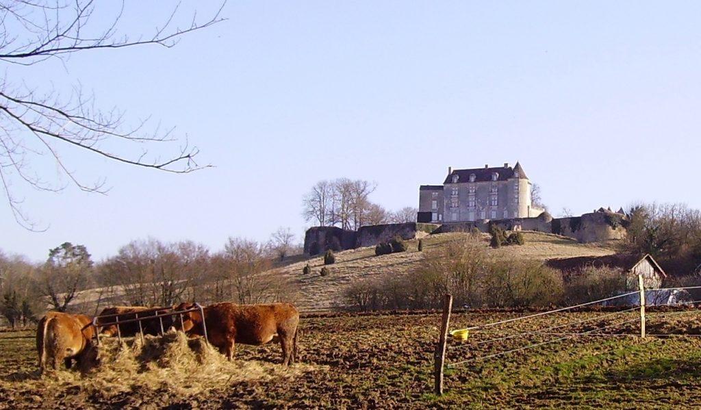 Photo du Château de Montréal (Issac) - Issac