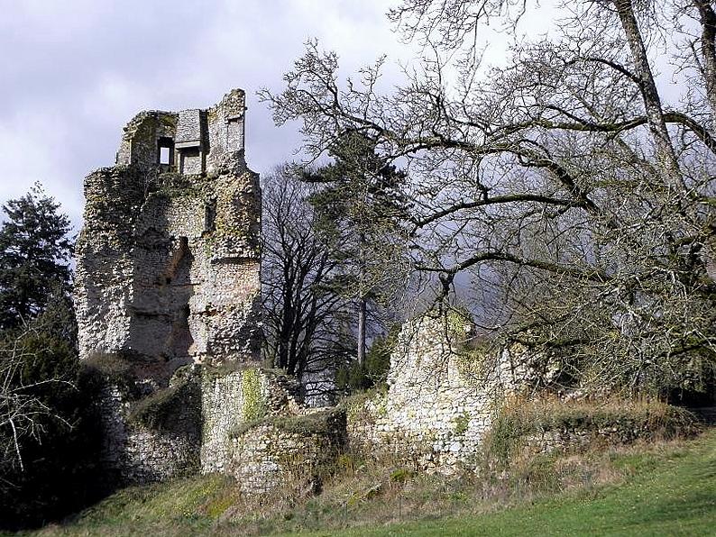 Photo du Château de Saint-Aubin-du-Cormier - Saint-Aubin-du-Cormier
